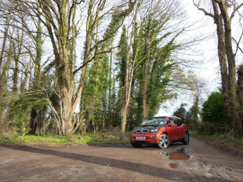 bmw-i3-red-trees-peterborough