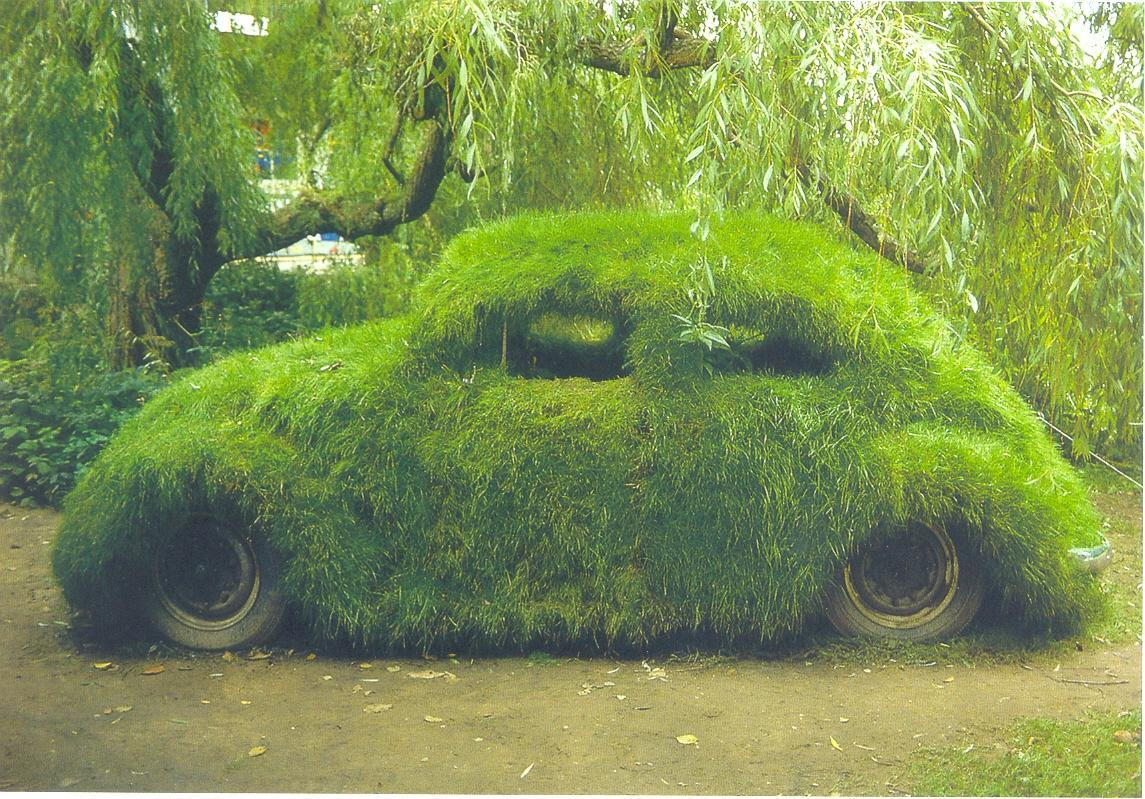green beetle car grass