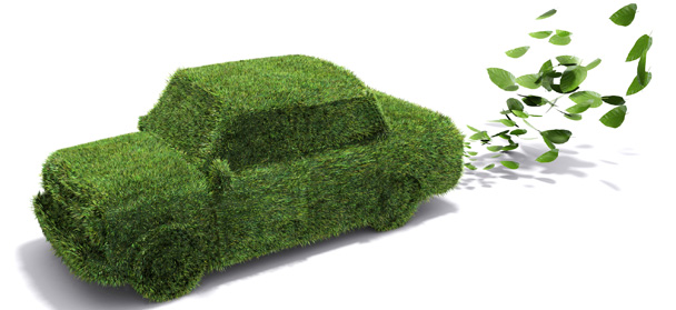 green car leaf